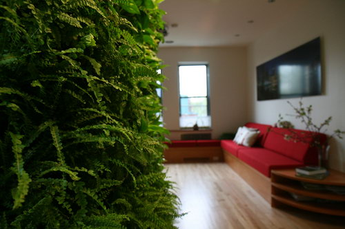 超养眼绿色环保家--时尚家居