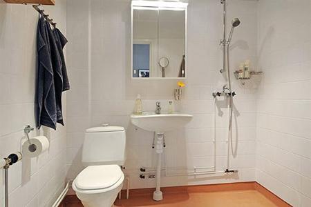 破解对策:马桶的坐向不应和卫生间门相对